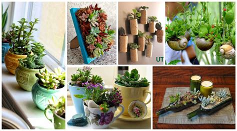 10+ Ideas Creativas Con Plantas Para Decorar Tu Hogar
