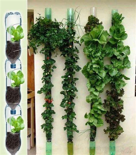 12 ideas para montar jardines verticales   Notas   La Bioguía