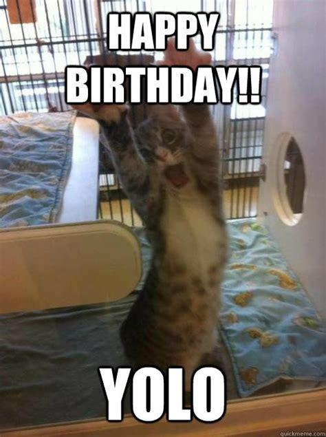 13 best cat birthday meme images on Pinterest | Birthdays ...