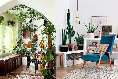 17 ideas para decorar tu sala de estar con plantas en esta ...
