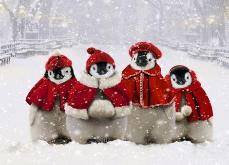 20 gifs y fotos animadas de Navidad realmente graciosas