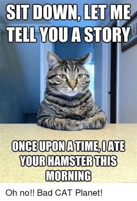 25+ Best Memes About Bad Cat | Bad Cat Memes