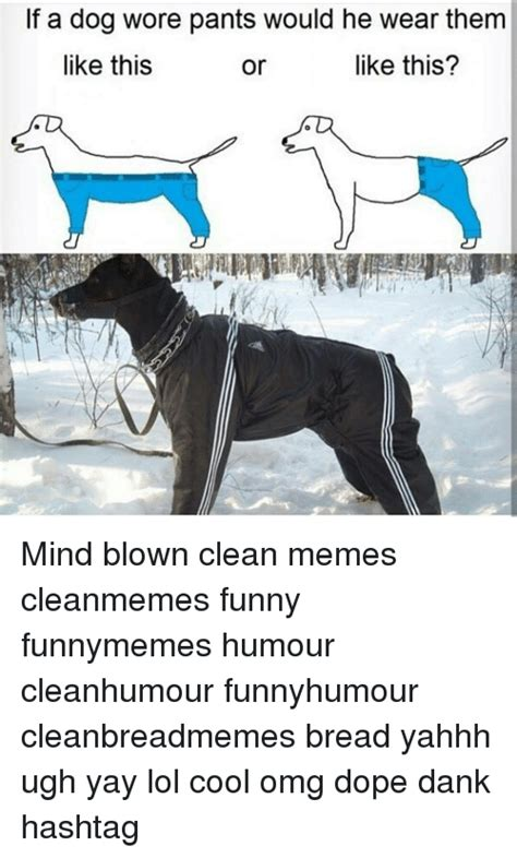 25+ Best Memes About Cleaning Meme | Cleaning Memes