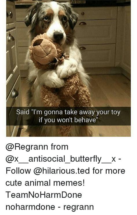 25+ Best Memes About Cute Animal Memes | Cute Animal Memes