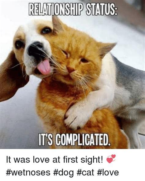25+ Best Memes About Dog Cat Love | Dog Cat Love Memes