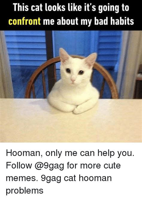 25+ Best Memes About Hoomans | Hoomans Memes
