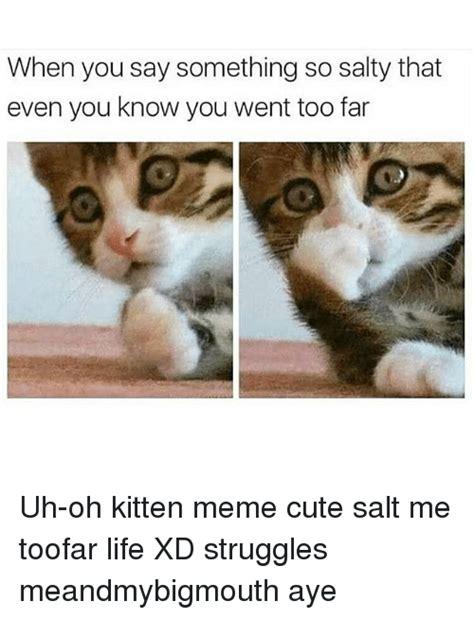 25+ Best Memes About Kitten Memes | Kitten Memes