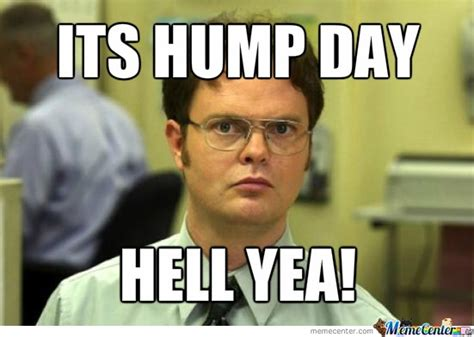 35 Very Funny Hump Day Memes, Gifs, Pictures & Photos ...
