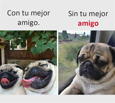 40 Imágenes y Memes chistosos 2017   Imagenes chistosas