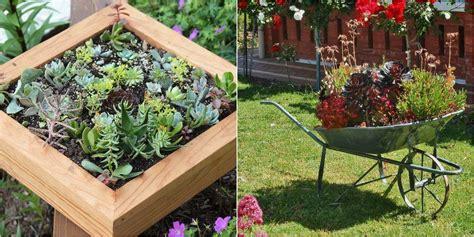 50 ideas para decorar con plantas suculentas | Plantas