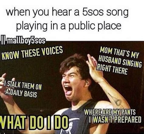 5sos Funny Memes | www.imgkid.com   The Image Kid Has It!
