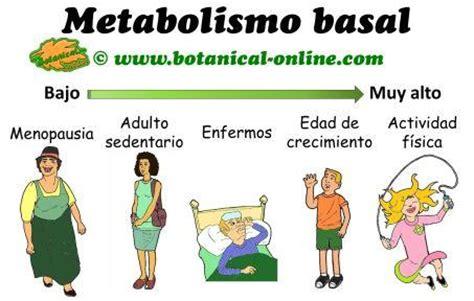 ACTUALIDAD GT: Metabolismo basal