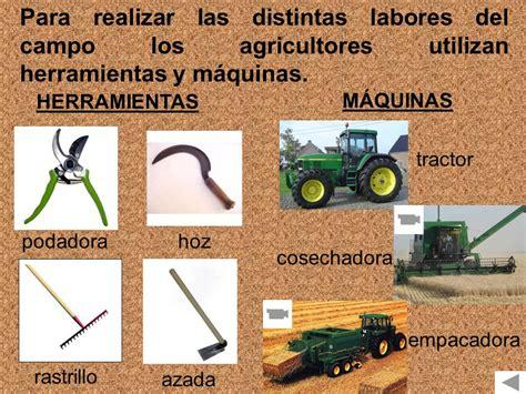 AGRICULTURA Y GANADERÍA   ppt descargar