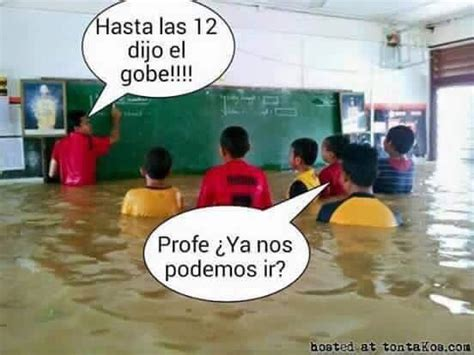 Aguacero de memes por la tormenta Erika   Univision