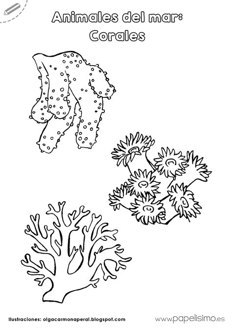 Animales del mar para imprimir y colorear   PAPELISIMO