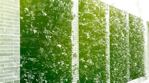 Arquitectura más verde + Jardines Verticales