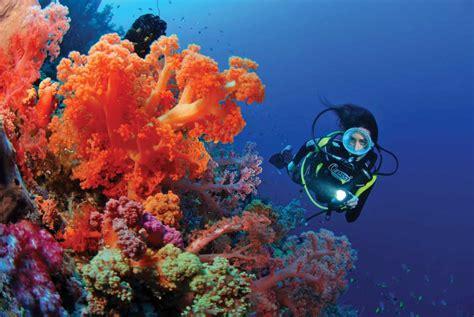Arrecifes de Coral de Fiyi