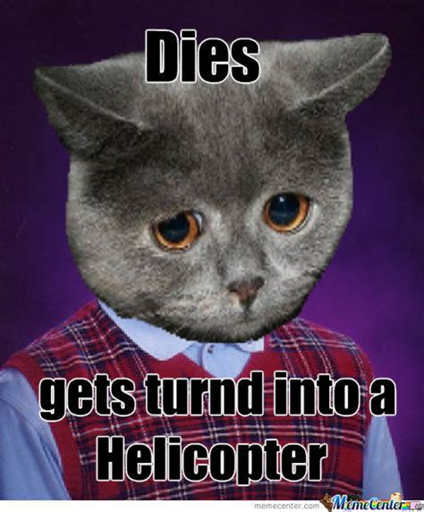 Bad Luck Cat by recyclebin - Meme Center