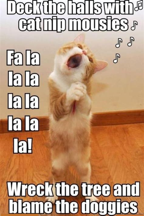 Cat Singing | Funny Pictures, Quotes, Memes, Jokes