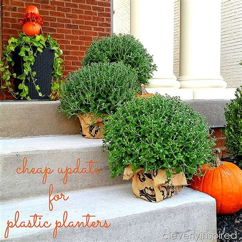 Cheap update for plastic planters   Cleverly Inspired