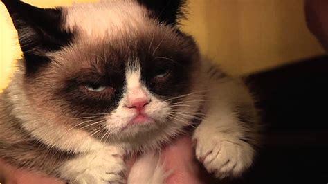 Cheer Up, Grumpy Cat!   YouTube
