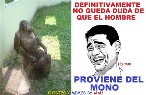 chistes y memes by mau: fails en facebook   YouTube