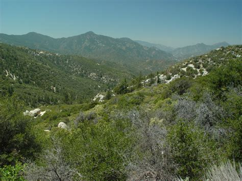 CNPS San Gabriel Mountains Chapter