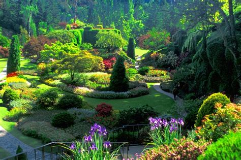 Colorful Butchart Gardens   Victoria, Canada   Virtual ...