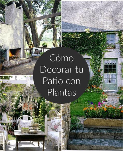 Cómo decorar el patio o la terraza con plantas