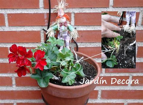 Como Decorar un Jardín con Poco Dinero | Fundació Ilersis