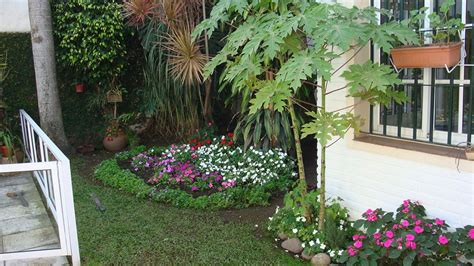 Como Hacer Un Jardin Sencillo Y Bonito #2 | plantas ...