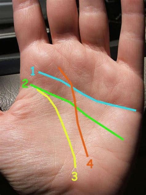 Cómo leer la mano   6 pasos   unComo