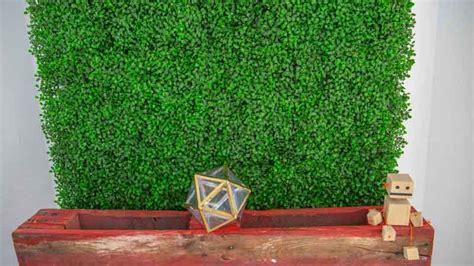 Cómo transformar la pared con un jardín vertical ...