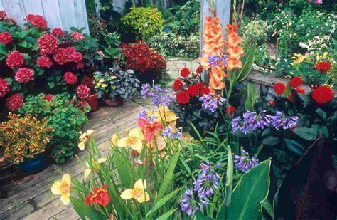 Container Gardening   Container Gardening propose, Ideas ...