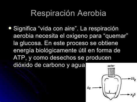 Cuadros comparativos entre la respiración anaeróbica y ...