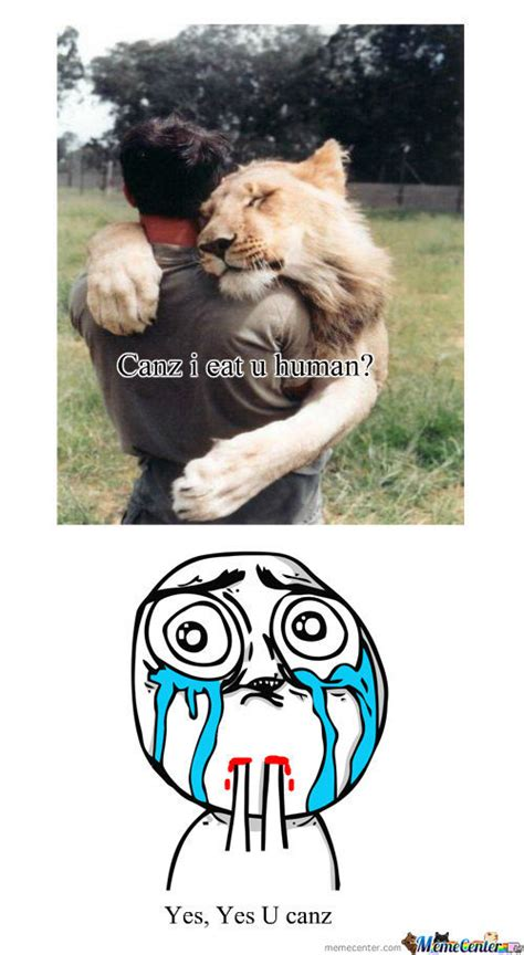 Cute Animal Memes. Best Collection of Funny Cute Animal ...
