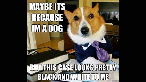 Cute Dog Memes | www.pixshark.com   Images Galleries With ...