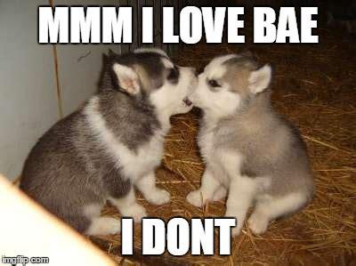 CUTE MEMES FOR BAE image memes at relatably.com