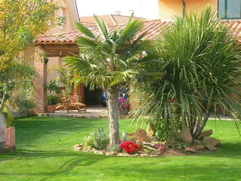 Decoración de jardines con palmeras