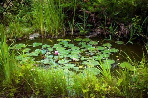 Decoración de Jardines pequeños 2018   BlogHogar.com