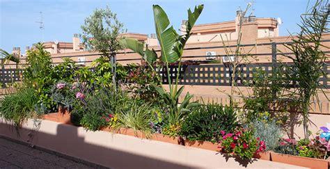 Decoración de terrazas con plantas   iOrigen