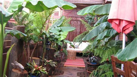 DECORACION INTERIORES | plantas de exterior para terrazas