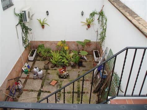 Decorar el patio y la terraza con plantas