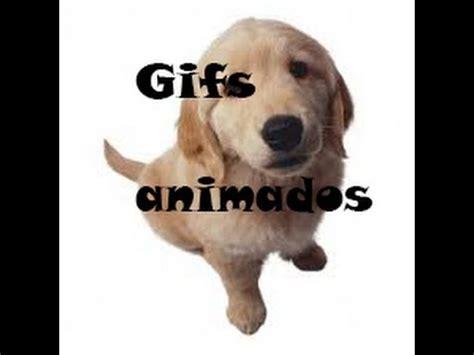 descargar pack de gifs animados   YouTube