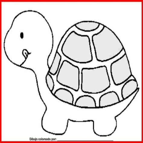 Dibujo De tortuga Para Colorear E Imprimir ...