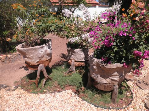 Dicas de decoração de Jardim rústico fotos | Decorando Casas