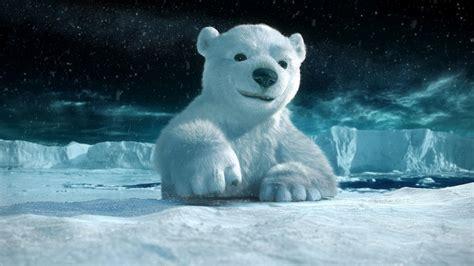 Dieren achtergrond met 3D ijsbeer | HD Wallpapers