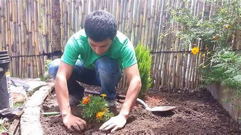 Diseño de Jardines Pequeños   Parte III   Ideas y Consejos ...