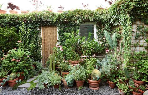 Diseño de jardines: un jardín pequeño y frondoso de 24 metros²