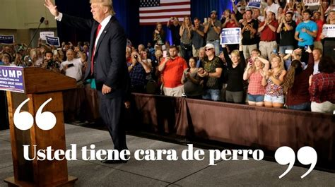 "Donald Trump ""un misógino y machista de aquellos""   Taringa!"
